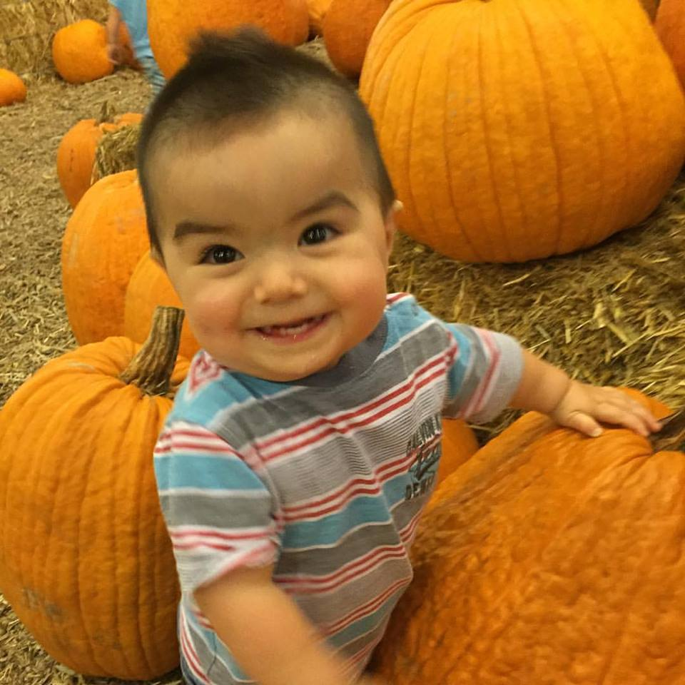 Jace_pumpkin patch